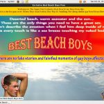 Get Best Beach Boys For Free